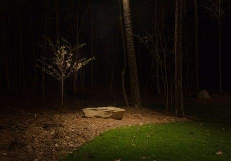Down-Lighting-Landscape