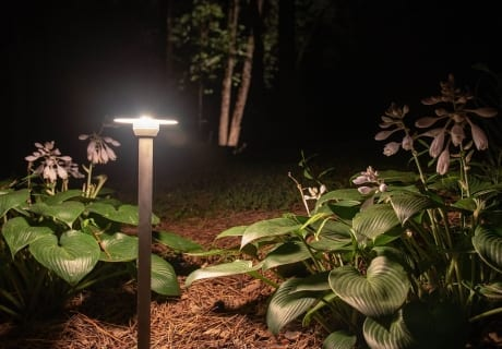 Flower-Garden-Lighting